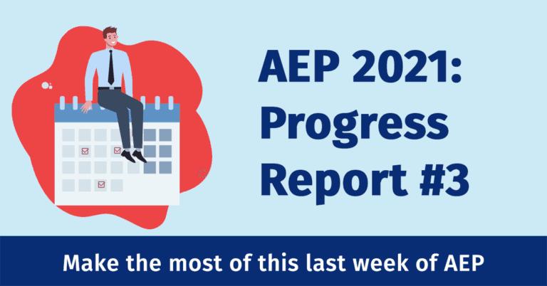 AEP Progress Report #3